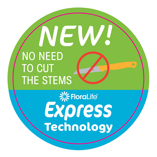 Express Technology